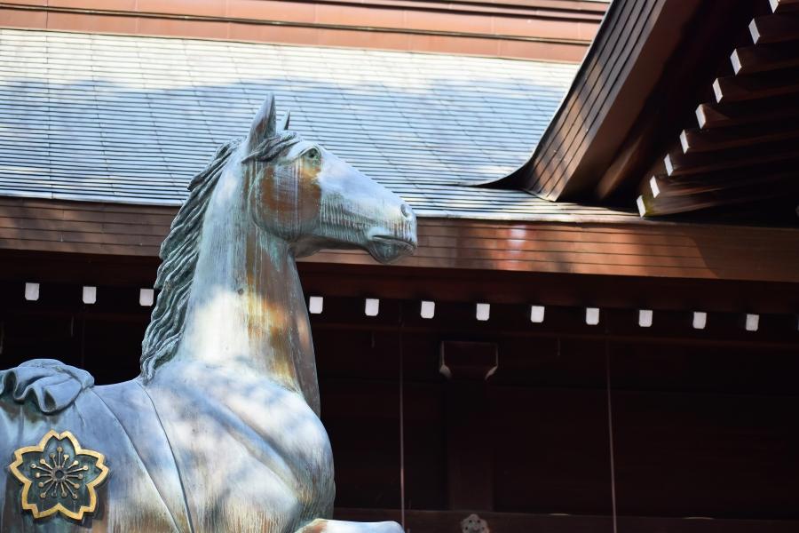 熊本県護国神社 ダックスそら