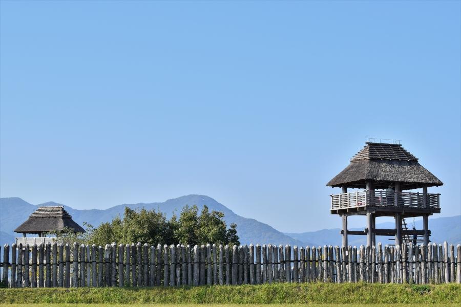 吉野ヶ里歴史公園 イノシシ