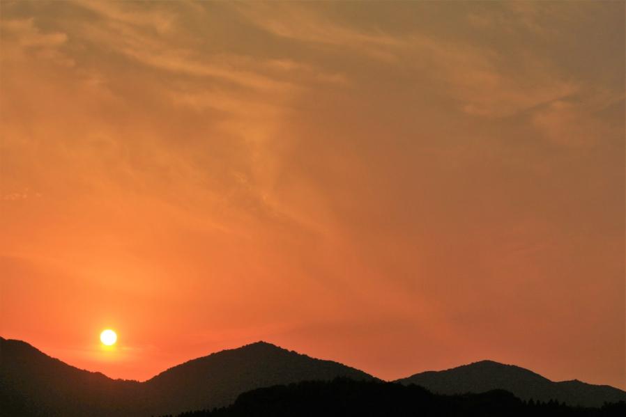 あんずの丘 夕陽