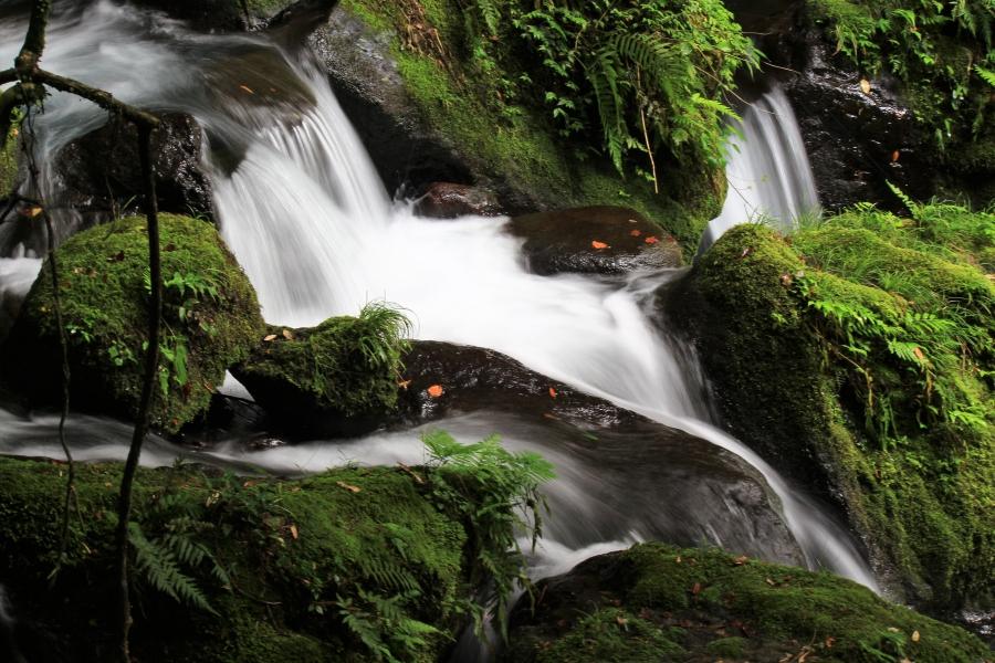白糸の滝で夕涼み