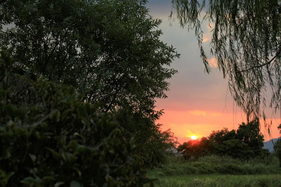 江津湖広木公園 夕陽