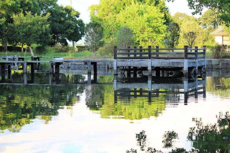 浮島水辺公園 池